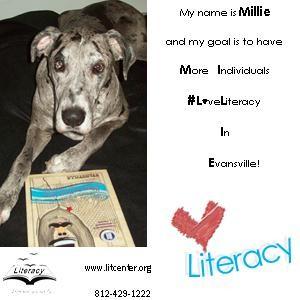 Millie Ad 5